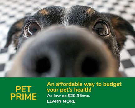 Pet-Prime