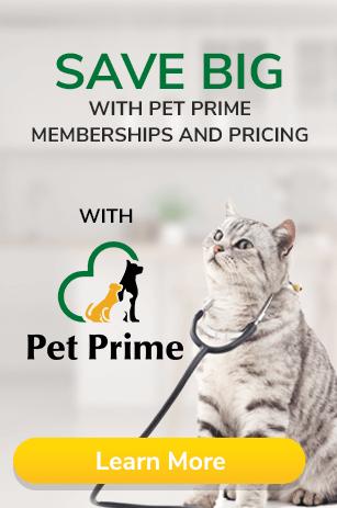 Surgeries-Pet-Wellness-Clinics