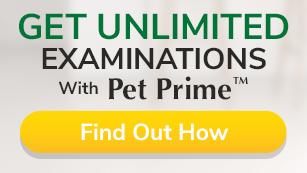 Examinations-Pet-Wellness-Clinics