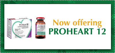 Now Offering ProHeart 12